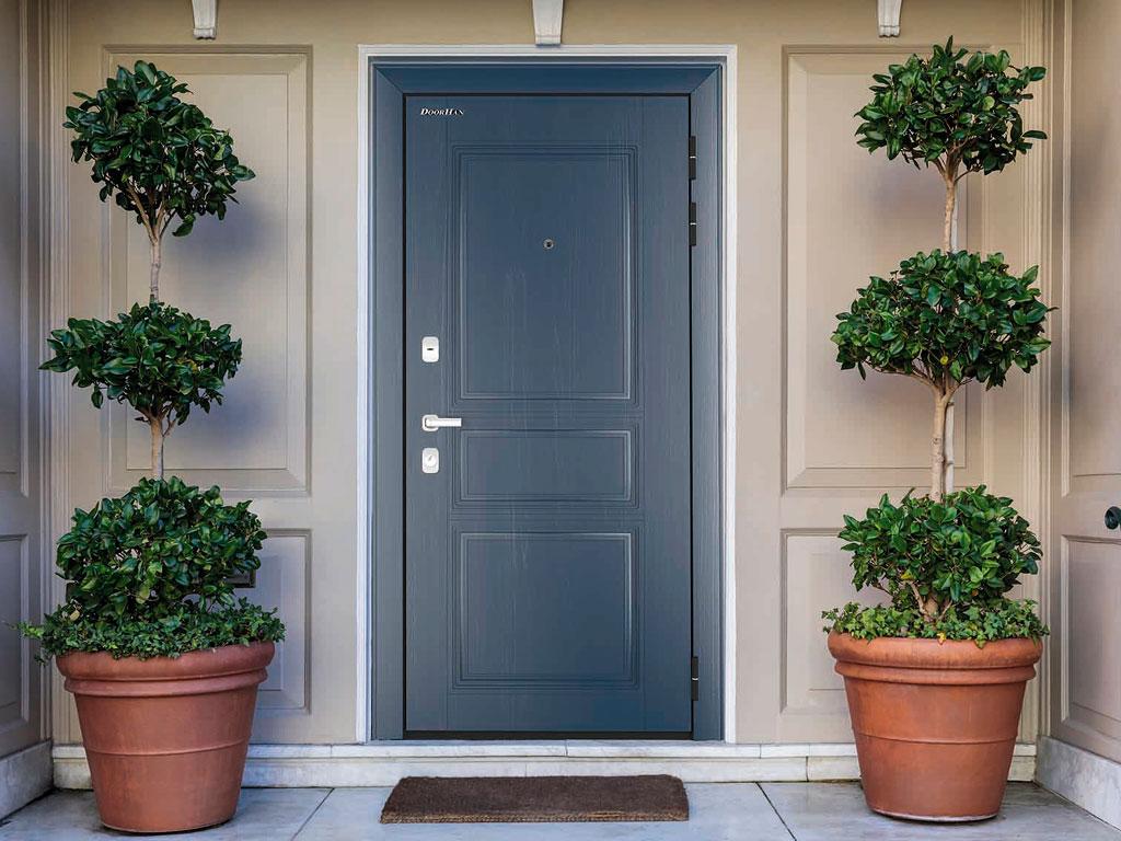 Двери бытовые «Премиум Плюс» ДорХан