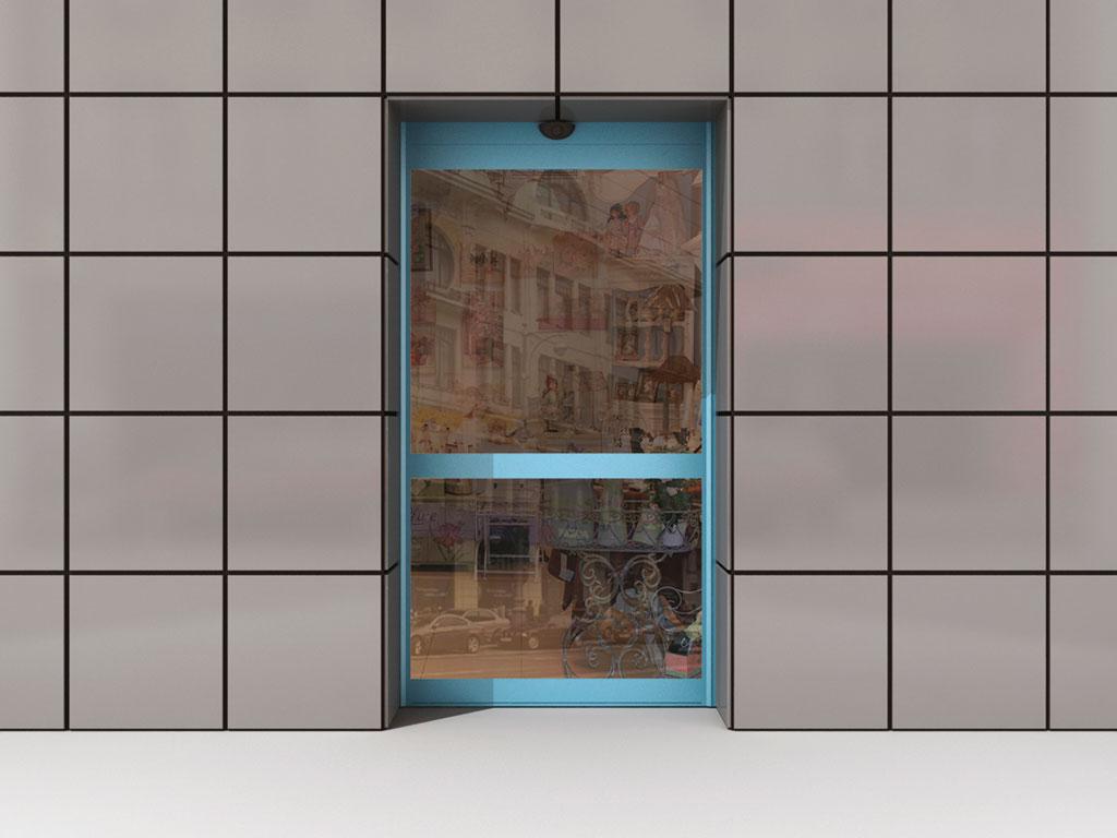 Одностворчатая дверь ДорХан